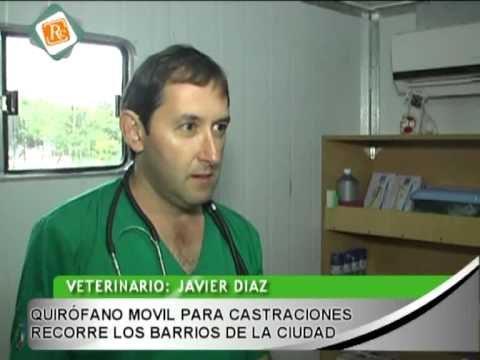 0158 JAVIER DIAZ - Quirfano movil para castraciones recorre la ciudad