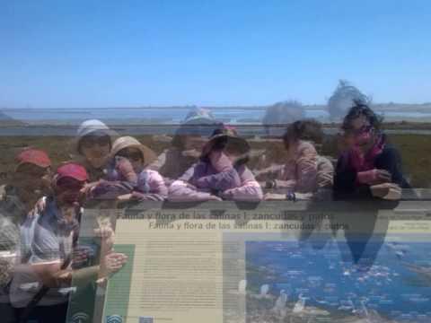 Grupos de coreanos Visitan Cabo de Gata