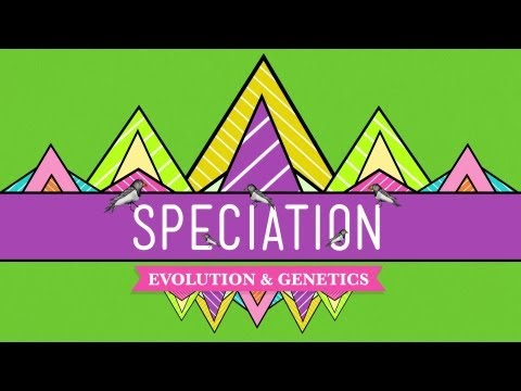 Speciation: Of Ligers & Men - CrashCourse Biology #15