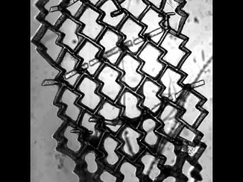 Tissue Velcro