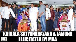 Kaikala Satyanarayana & Jamuna Felicitated by Movie Artists Association - idlebrain.com - IDLEBRAINLIVE
