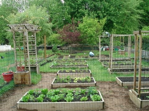 Backyard Organic Gardening Ideas - How My Dad Transformed My Mom's Garden (Part 1)