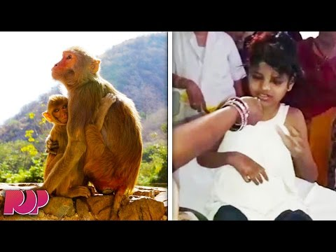 Girl Was Found Living With Monkeys In The Forest