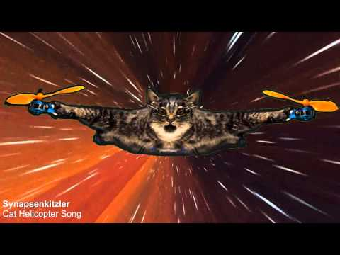 Video screenshot Synapsenkitzler Cat Helicopter Lied + Video