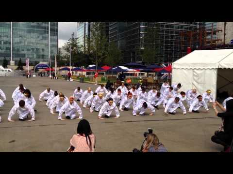 Age of Wushu media launch: Tai Chi Performance