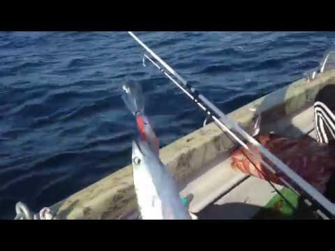 рыболовные снасти в геленджике