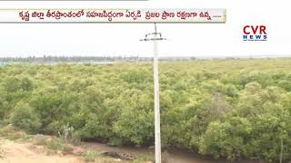 Mada Forest Logging in East Godavari | CVR News - CVRNEWSOFFICIAL