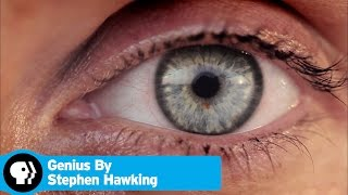 GENIUS BY STEPHEN HAWKING | What Are We? | PBS - PBS