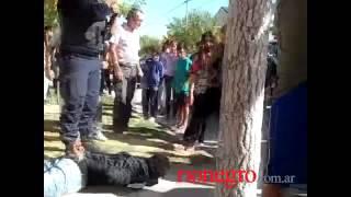 Ladrón herido tras golpiza de vecinos en Roca