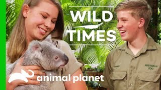 Meet Dexter The Cuddly Koala! | Wild Times - ANIMALPLANETTV