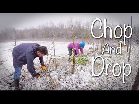 GGC - 73 - Preparing our Hugelkultur Garden for Winter: Chop and Drop