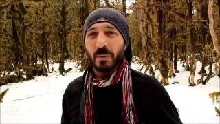 Şimşir Ağaçları kuruyor Ahmet Öksüz