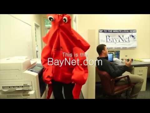 This is TheBayNet.com 1