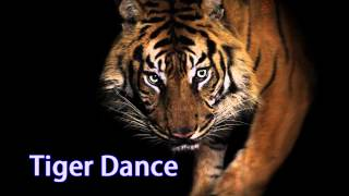 Royalty Free :Tiger Dance