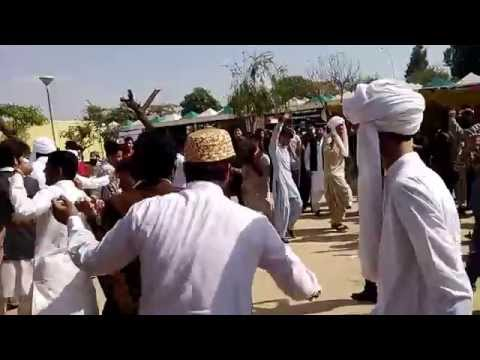 Baloch Cultural Day Celebration of Diversity Balochi Dance by Baloch Students