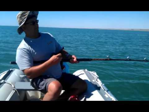 капшагай рыбалка