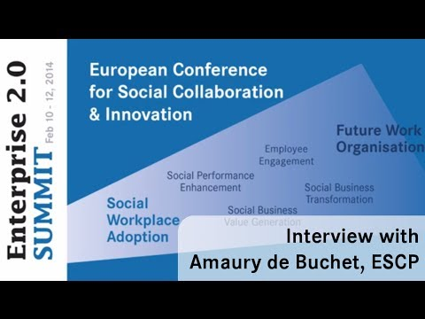 #e20s 2014: Interview with Amaury de Buchet, ESCP