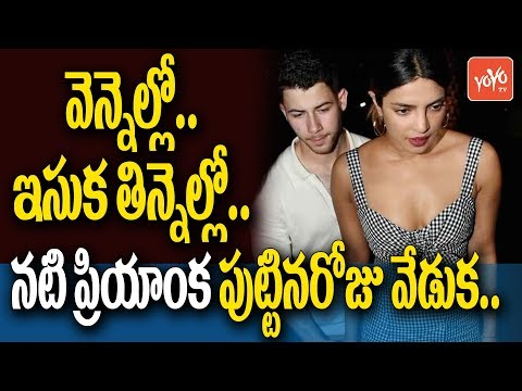 Nick Jonas Has Big Plans For Rumoured Girlfriend Priyanka Chopras