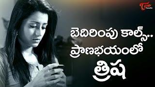 Actress Trisha in Trouble over Jallikattu  #FilmGossips - TELUGUONE