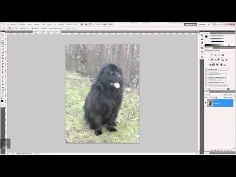 """""""A Tutta Grafica"""" (Photoshop CS5, Selezione Rapida e Bacchetta Magica)"""