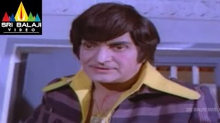 Tiger Movie NTR Action Scene With Jaggu | Sri Balaji Video - SRIBALAJIMOVIES