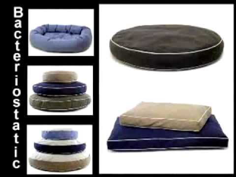 Dog Gone Smart Dog Bed Demo