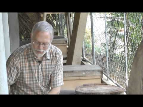 Beekeeping Extension and Training in Vietnam - A Documentary Featurette