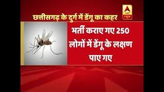 13 die in two weeks due to Dengue in Chattisgarh - ABPNEWSTV