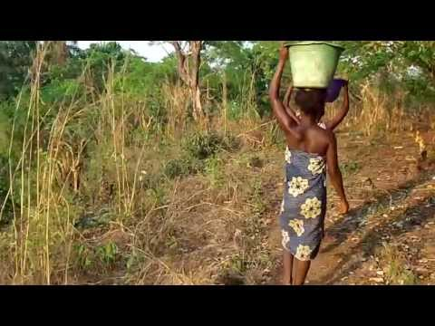 Sierra Leone Women Fetching Water in Sumata Community Forest