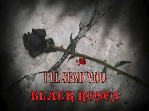 The Rasmus 10 Black Roses - LYRICS