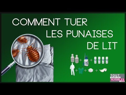 Related video - Comment tuer les puces ...