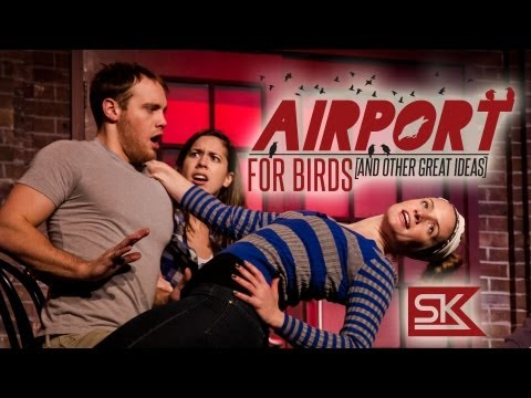 Airport for Birds Preview