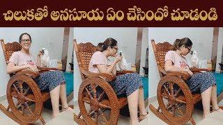 Anasuya funny talking with parrot | Anasuya Bharadwaj | - IGTELUGU