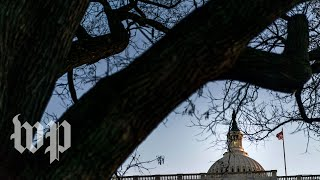 Homeland Security secretary Nielsen appears at Senate oversight hearing - WASHINGTONPOST