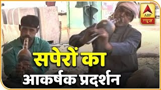 Snake charmers give magnificent performance in Kumbh mela - ABPNEWSTV