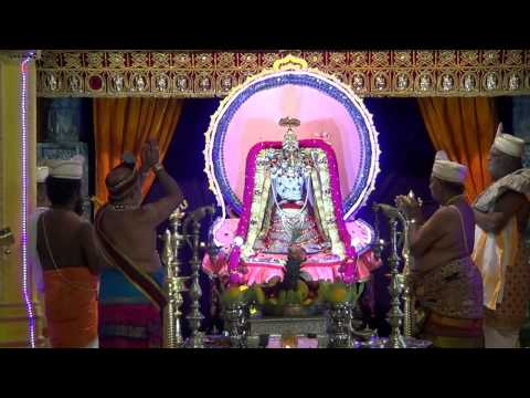 Sri Varasiththi Vinaayagar Mahotsavam 2014 Day 11 Morning