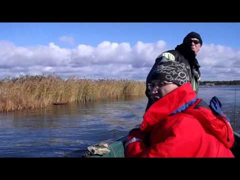 ловля щуки в море видео