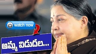 Jayalalithaa Released from Bangalore Jail after 21 days : TV5 News - TV5NEWSCHANNEL