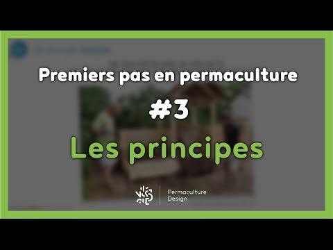 Premiers pas en permaculture #3/7 - LES PRINCIPES