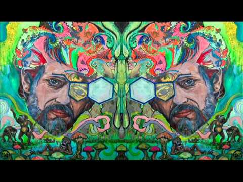 The Light In Nature (Terence McKenna) [FULL]