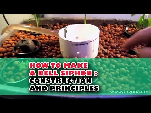 Aquaponic Bell Siphon
