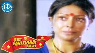 Telugu Movies    Best Emotional Scenes    Illu Illalu Pillalu Movie - IDREAMMOVIES