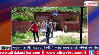 video : यमुनानगर की प्लाईवुड फैक्ट्री में करंट लगने से दो कर्मियों की मौत