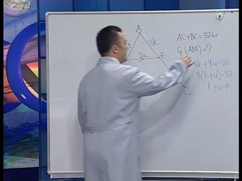 Üçgende Benzerlik ve Alan ilişkisi - BİL IQ YGS Geometri Eğitim Seti