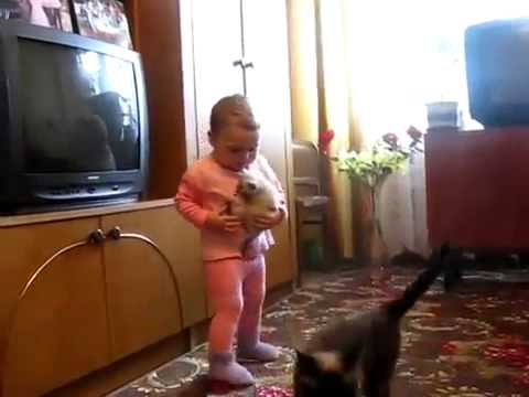 Our Cute Pets – Baby, Kitty and Cat