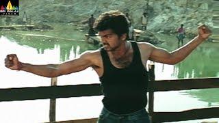 Dopidi Movie Vijay Powerful Action Scene   Telugu Movie Scenes   Trisha, Suman   Sri Balaji Video - SRIBALAJIMOVIES
