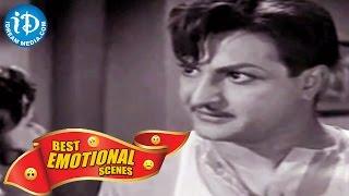 Telugu Movies || Best Emotional Scenes || Intiki Deepam Illale Movie - IDREAMMOVIES