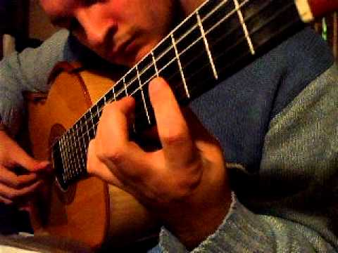 John Williams played by Flavio Sala - Schindler's List for solo guitar