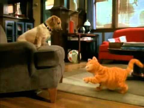 Chamada para o filme do gato Garfield - www.kamisa.com.br