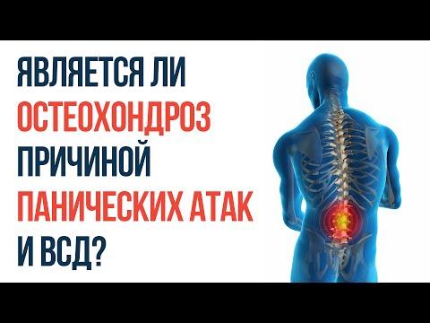 Апис В Лечении Панических Атак